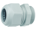 Buy Cable Gland Polyamide M25 8 mm