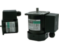 Buy Alternating-Current Motor 4.9Nmm